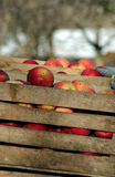 Industrial apples in a wooden crate Stock Photo