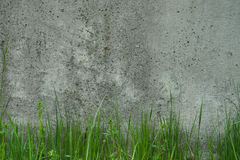 Industrial background. Green grass growing from the bottom of an Royalty Free Stock Images