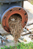 Industrial bird nest Royalty Free Stock Photo