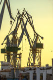 Industrial cargo cranes in the dock Royalty Free Stock Photo