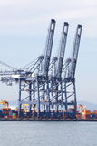 Industrial Cargo Cranes in Industrial Port Stock Image