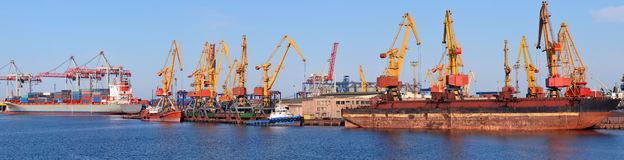 Industrial cargo port. Vessel unloading, panorama Royalty Free Stock Images