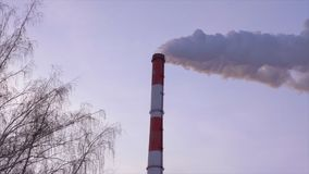 Industrial chimney stack at heat power station on background sky and bare trees. Smoking pipes at industrial heating and energy station in winter sky stock video footage