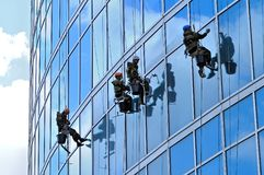 Industrial climbers wash windows of skyscraper Stock Images