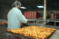Industrial cookie factory Royalty Free Stock Image