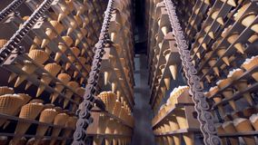 Industrial cooling chamber with lots of ice cream cones moving on a conveyor. stock video