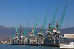 Industrial cranes in Batumi Royalty Free Stock Images