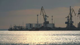 Industrial cranes on a wharf in a port stock video