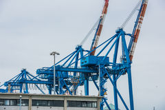 Industrial cranes Royalty Free Stock Photos