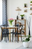 Industrial dining room interior with a table, black chairs, pink. Tulips, plants and shelves in the background stock photos