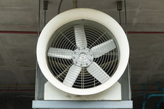 Industrial fan. Behind a metal grate stock photography