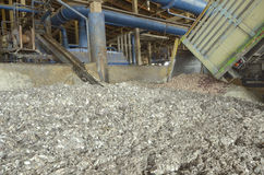 Industrial fish. In fish meal factory stock images
