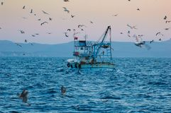 Industrial fishing and fishing stock photography