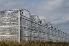 Industrial greenhouses. On the sky background with clouds Stock Photography