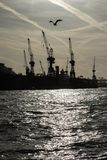 Industrial harbour scenery – silhouettes of cranes and a sea g Stock Photo