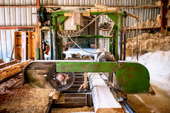 Industrial heavy machinery, big saw cutting logs Royalty Free Stock Photo