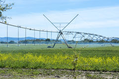 Industrial irrigation of crops Stock Photography