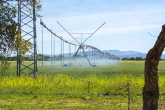 Industrial irrigation of crops Stock Photos