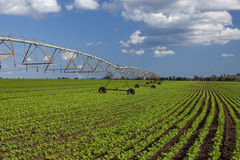 Industrial irrigation equipment on farm field under a blue sky Royalty Free Stock Images