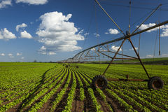 Industrial irrigation equipment on farm field under a blue sky i Stock Photos