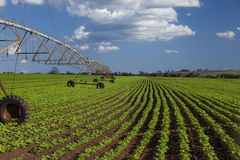 Industrial irrigation equipment on farm field under a blue sky i Royalty Free Stock Images