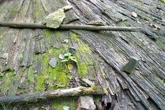 Industrial Logging Stock Photo