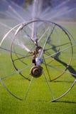 Industrial Outdoor Watering Stock Photography