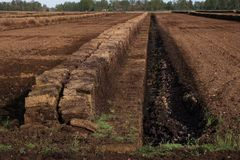 Industrial peat extraction with a ditch and piled turf blocks, n Royalty Free Stock Photos