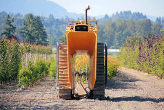 Industrial Plant Cropper Stock Photo