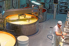 During industrial production of Gruyere cheese Stock Photography