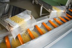 Industrial production of pastaon automated food factory Stock Photo