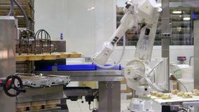 Industrial robot machine biscuit factory cup cakes stock footage