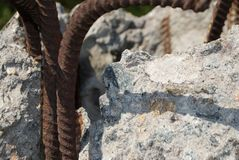 Industrial ruins building details. Rusty iron rods stock image