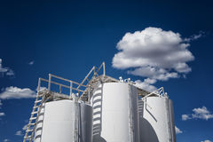 Industrial Storage Tanks Royalty Free Stock Photography