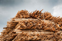 Industrial Timber Royalty Free Stock Image