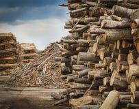 Industrial Timber Stock Photos