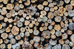 Industrial Timber Royalty Free Stock Photo