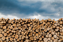 Industrial Timber Royalty Free Stock Photos