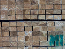 Industrial tree. Piled tree boards to be used in construction or for furniture stock photos