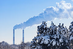 Industrial tubes smoke in front of blue sky and winter spruces Royalty Free Stock Images