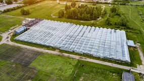 Industrial vegetable growing in greenhouses top view royalty free stock image
