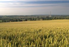 Industrial wheat Stock Photography