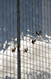 Industrial window cleaners. In action suspended in front of a large glass multi-story building Royalty Free Stock Photo
