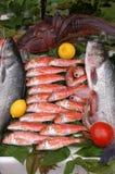 Industrias pesqueras Fotografía de archivo