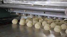 Industrie de biscuit de produits de confiserie à l'usine de cuisson clips vidéos