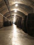 Industrie vinicole Photo libre de droits