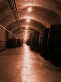 Industrie vinicole image stock
