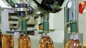 Industrieel transportbandmechanisme in de wijnmakerij Sluit de fles met roze wijn stock video
