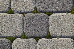 Industriegebäudehintergrund von Pflastersteinen mit überwuchertem mit Moos in den Sprüngen Texturierung des Hintergrundes Lizenzfreie Stockfotos
