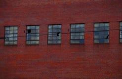 Industriell fasad för röd tegelsten med brutna fönster royaltyfri fotografi